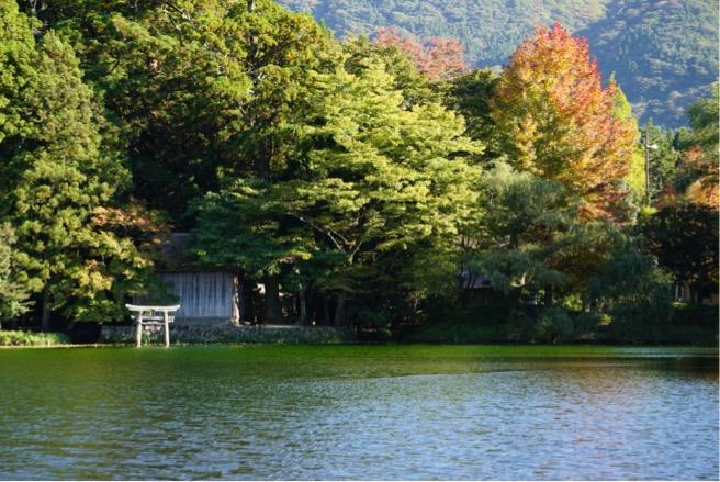 2020/10/20金鱗湖